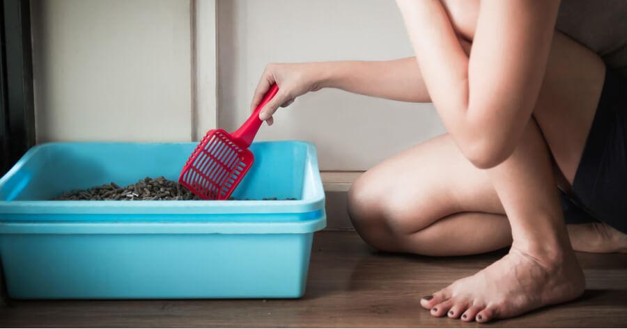 mujer limpia caja de arena gato