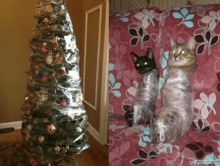 arbol navidad para gatos