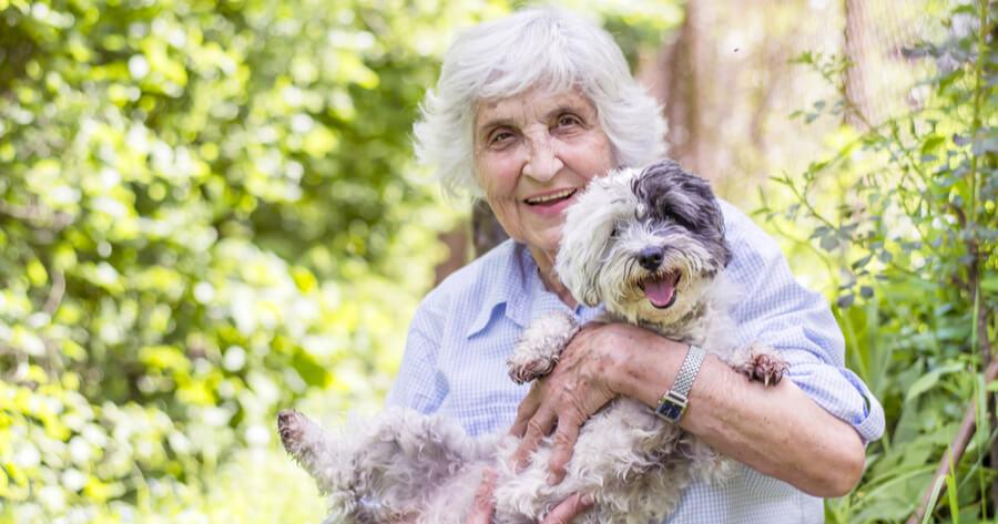 esperanza de vida con perro