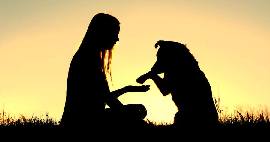 mujer con perro en el campo