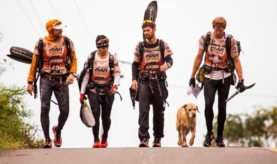 arthur perro callejero acompana excursionistas