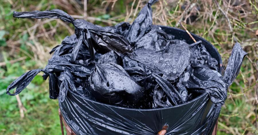 bolsas biodegradables perros