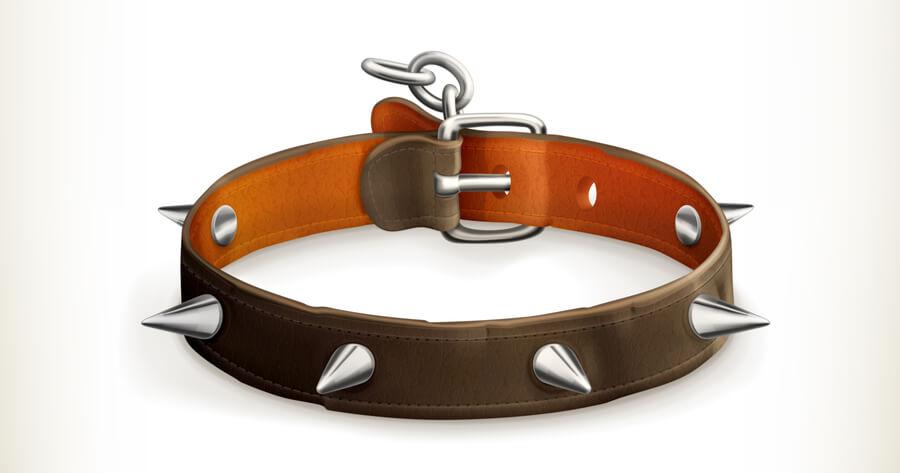 collar pincho perro