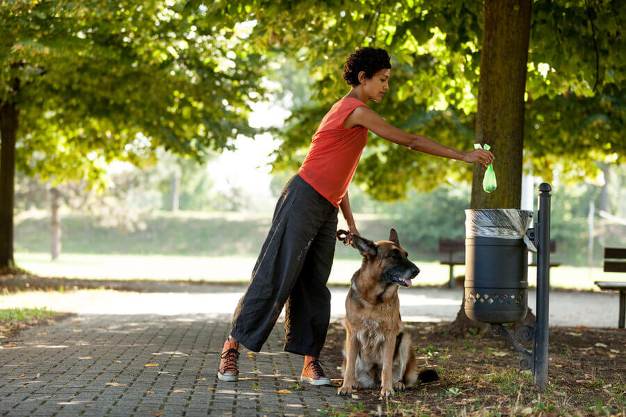 mujer haciendo deporte con su perro