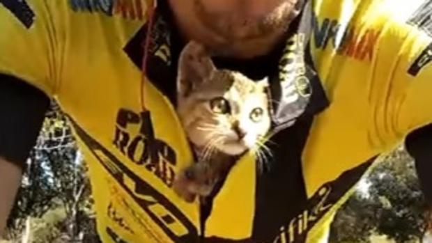 dia mundial bicicleta gato rescatado ciclista