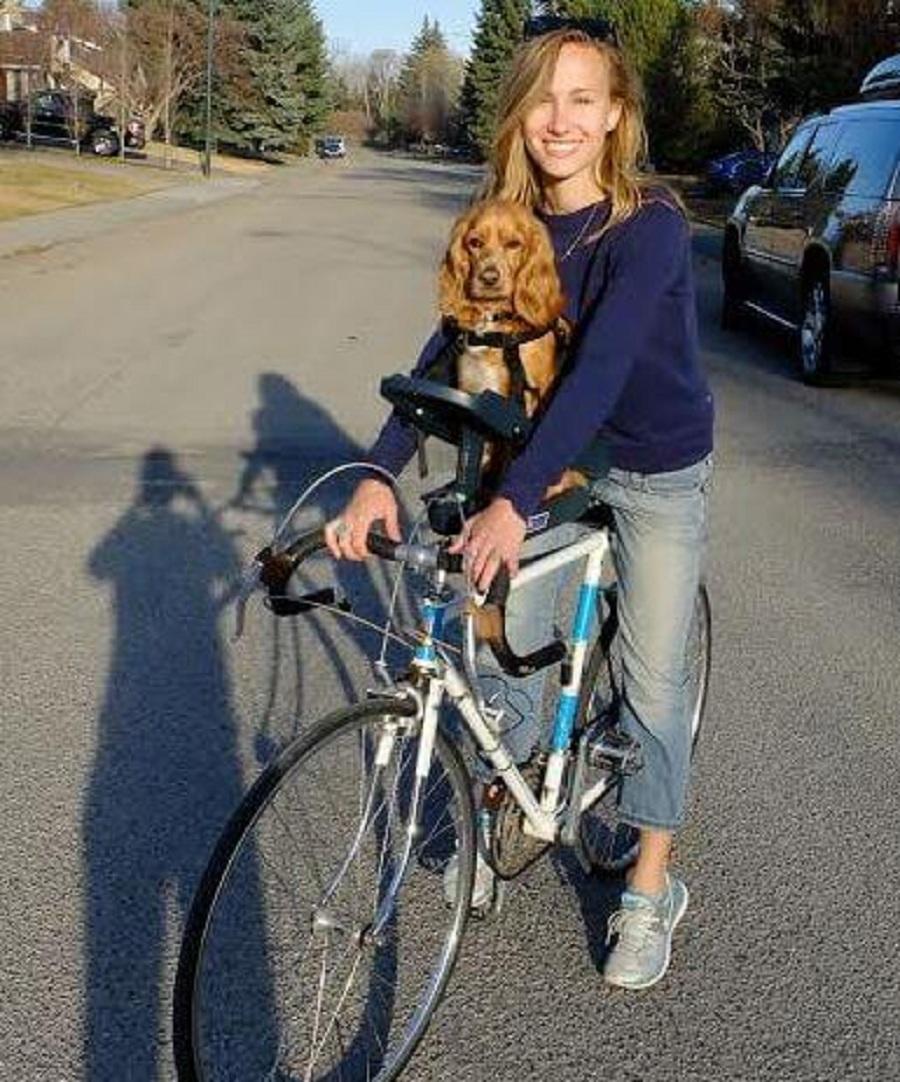 dia mundial bicicleta perro sentado