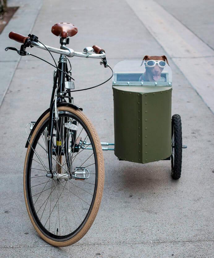 dia mundial bicicleta perro sidecar