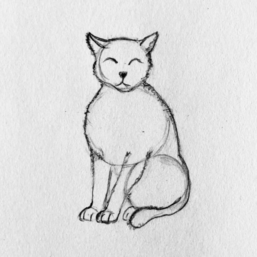 gato dibujo paso 4