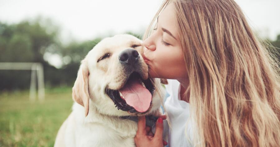 humana besa perro golden