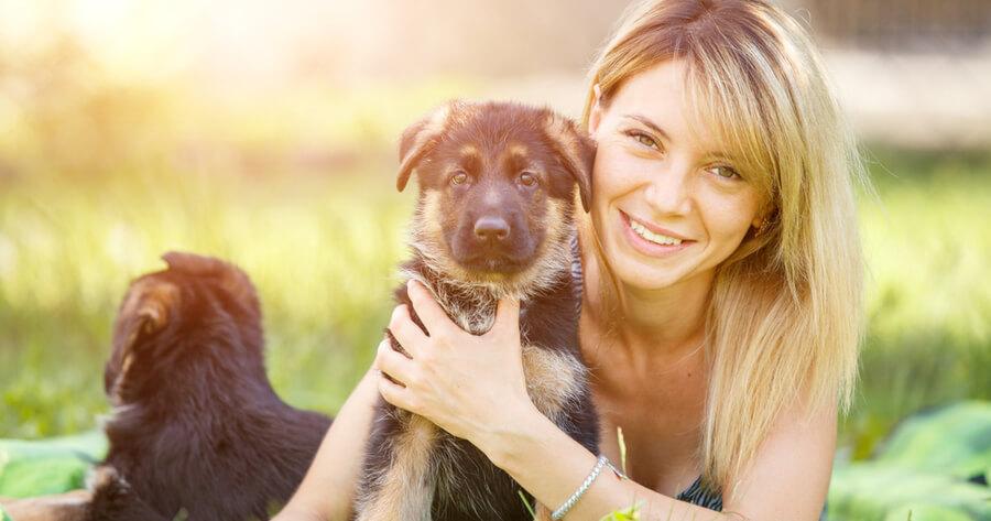 pastor aleman cachorro adopcion