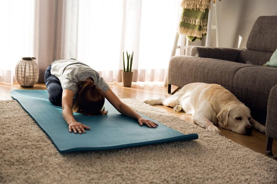 perro tumbado yoga