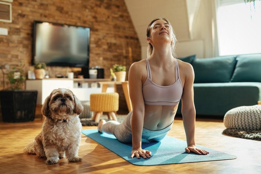 perro y dueña haciendo yoga