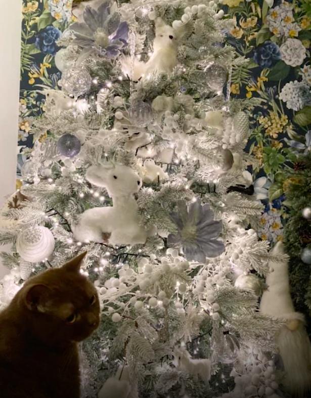 arbol de navidad gatos juego