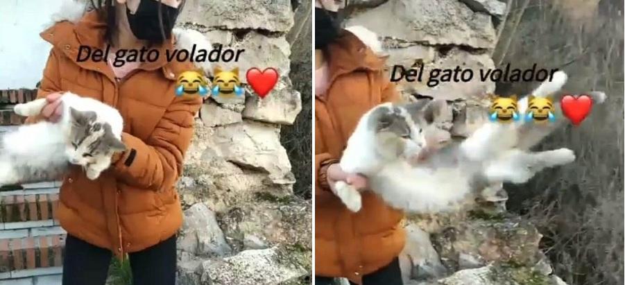 chica gato malaga