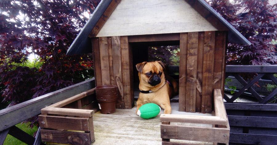 casetas para perros madera y techo a dos aguas