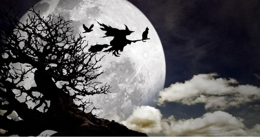 bruja con gato volando
