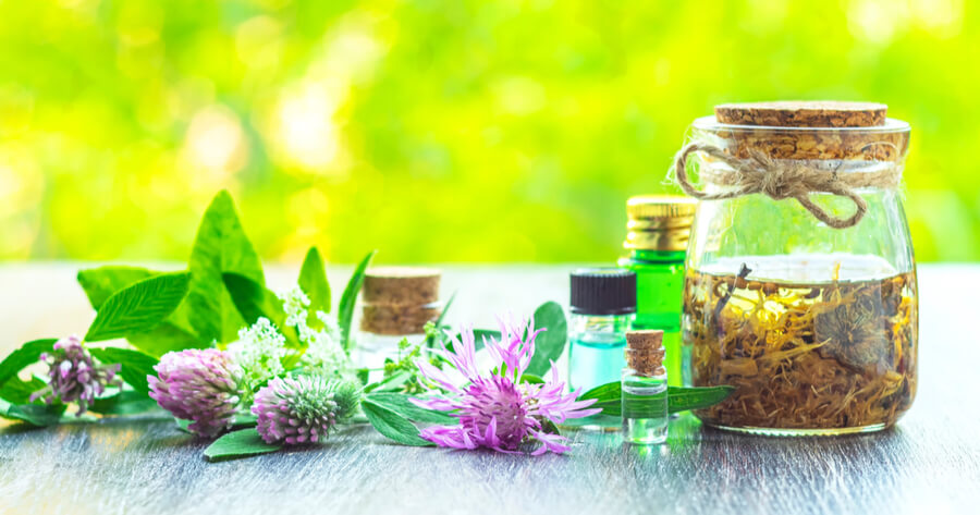 homeopatia para curar la alergia a los gatos