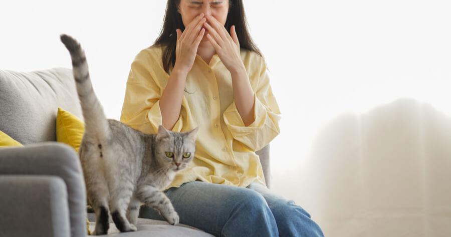 mujer estornudando delante gato