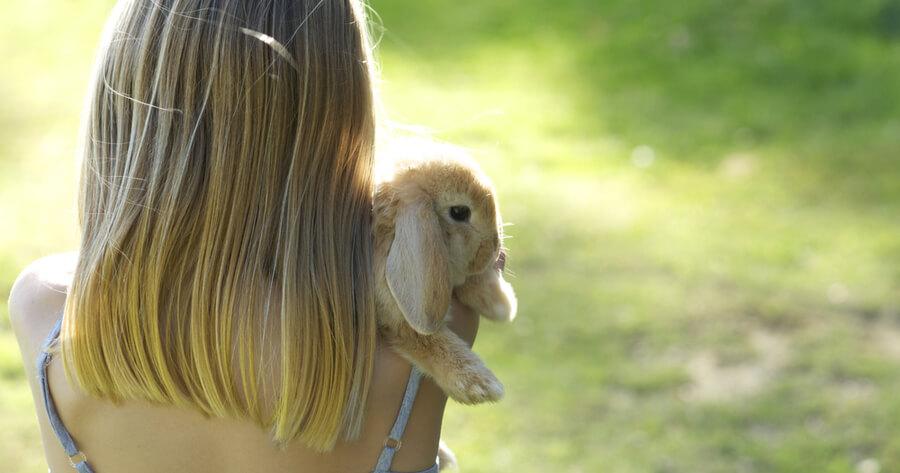 conejo abrazos