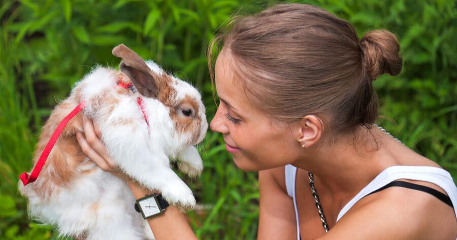 conejo mujer embarazada