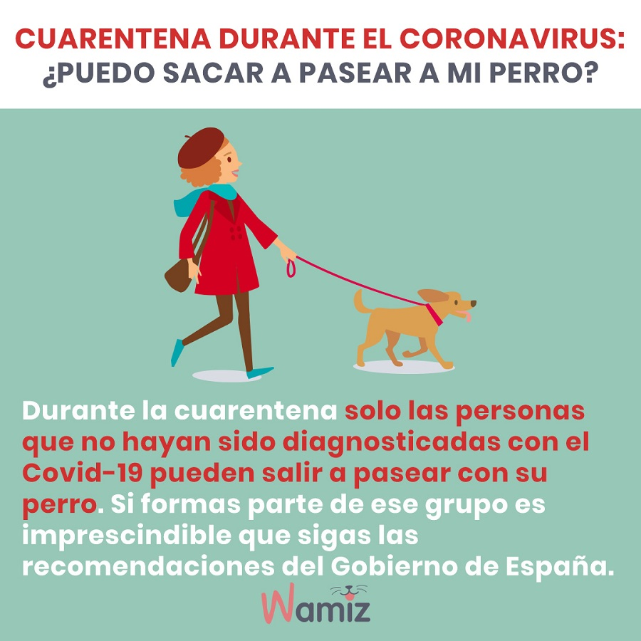 coronavirus puedo pasear perro