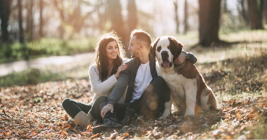 dedica tiempo perro dog lovers day