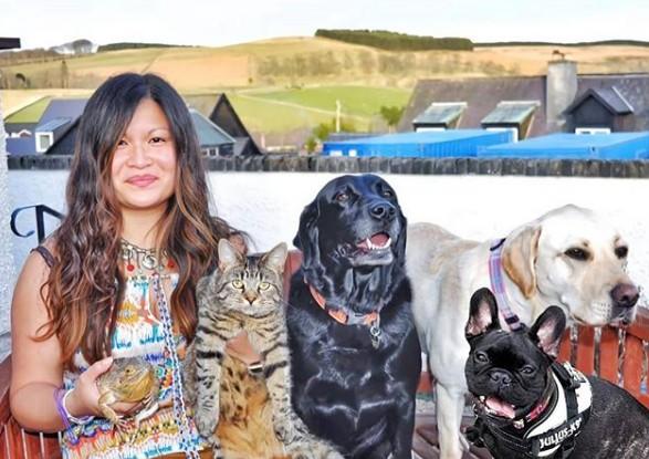 familia perros gatos lagarto instagram