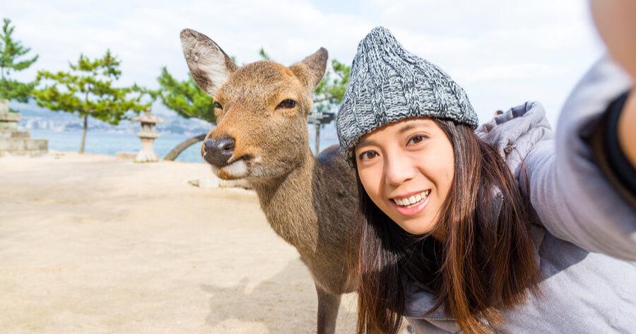turista selfie ciervo