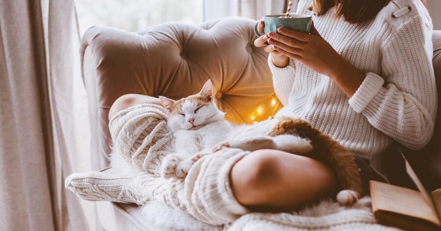 vivir con un gato
