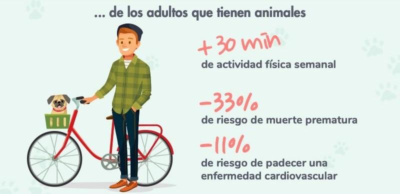 beneficios de tener animales