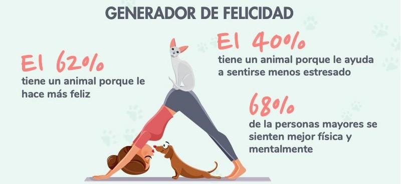 beneficios de tener perro o gato wamiz infografia