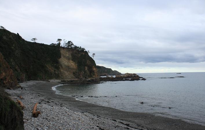 playas perros asturias castello el franco