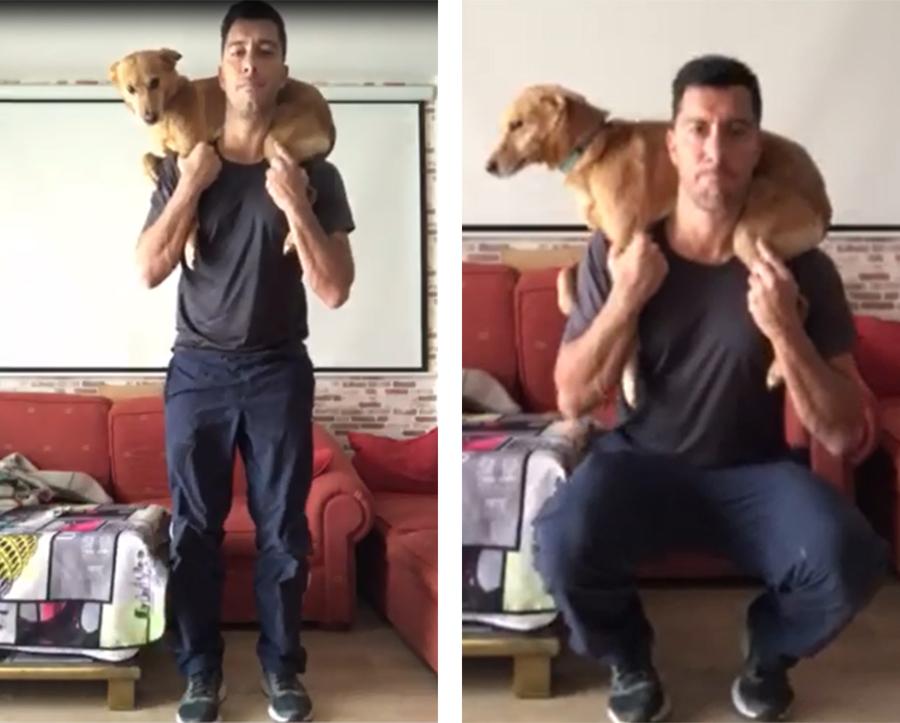 sentadillas con perro