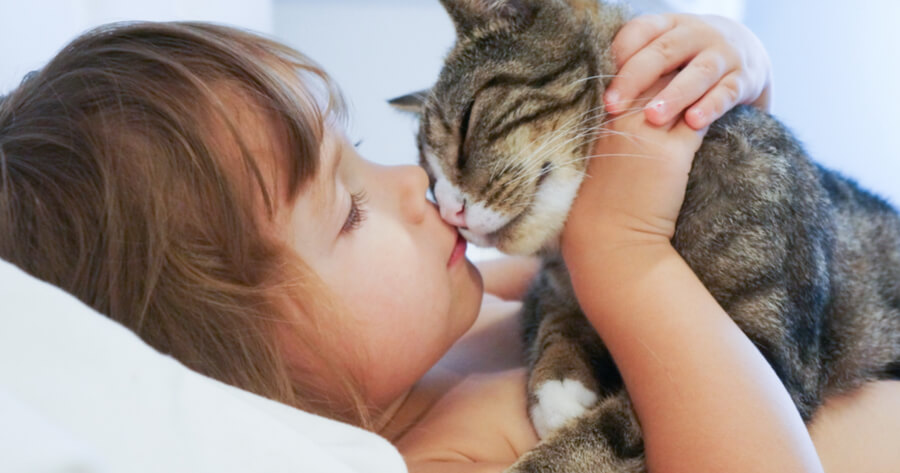 Child kissing and bonding with cat