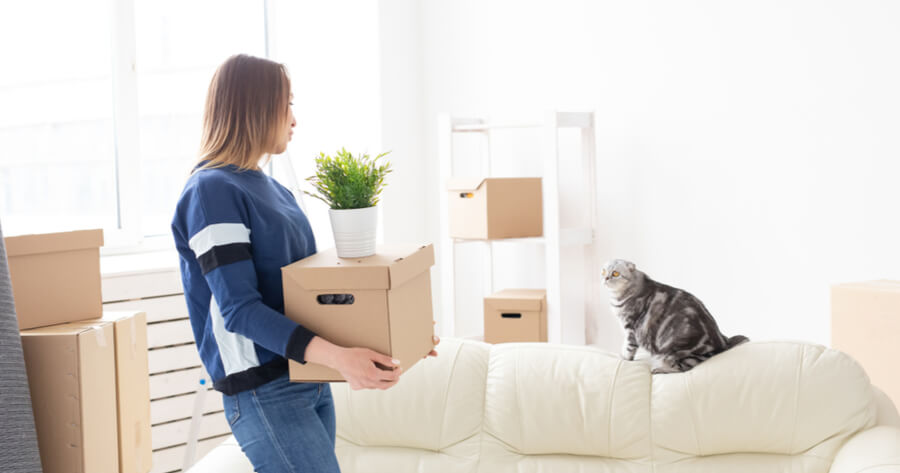 woman and cat moving houses