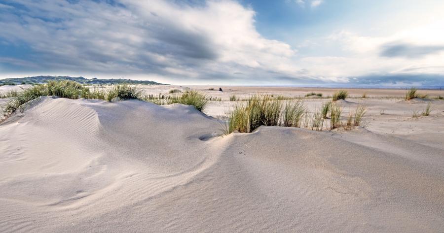 Küste auf Borkum