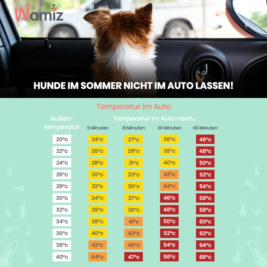 Temperaturen im Auto