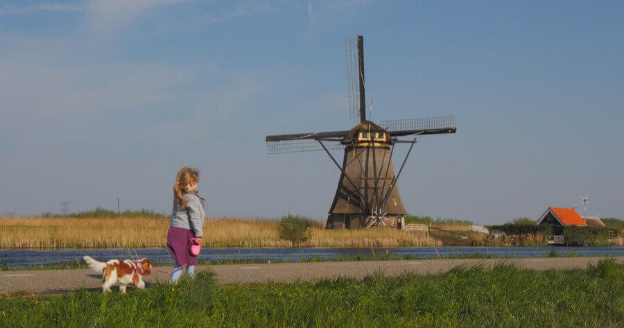 Gassi vor Windmühle