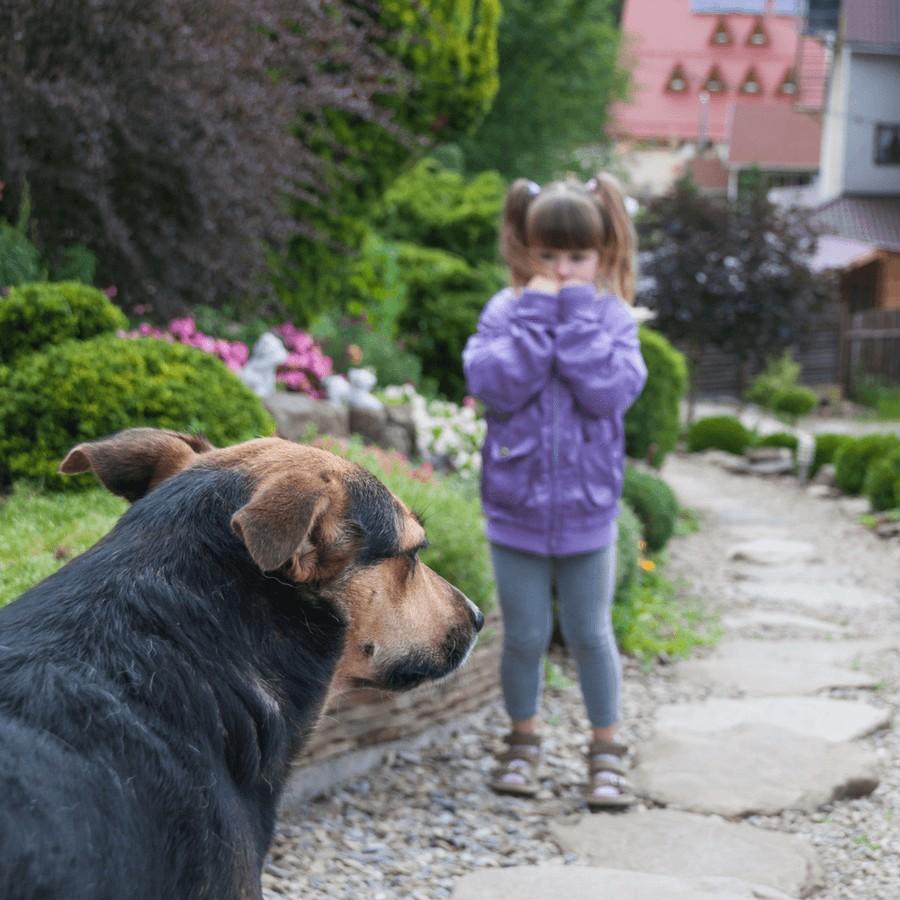 Mädchen hat Angst vor Hund