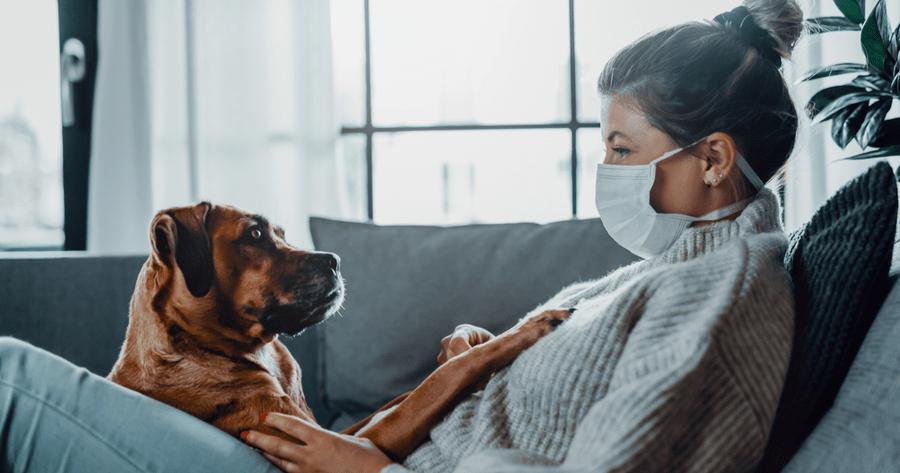 perro y humana confinamiento