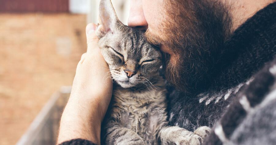 hombre besa la cabeza de un gato entre sus brazos
