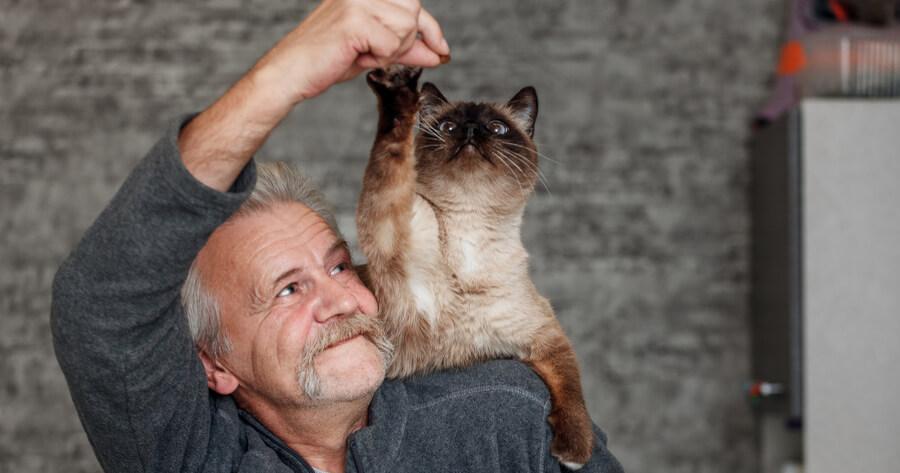 hombre tiene sobre su hombro a un gato con el que juega