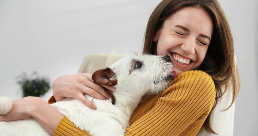 perro da un lameton a una mujer que sonrie