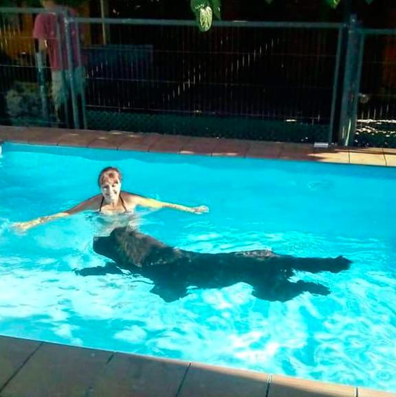 terranova gigante piscina con su dueña