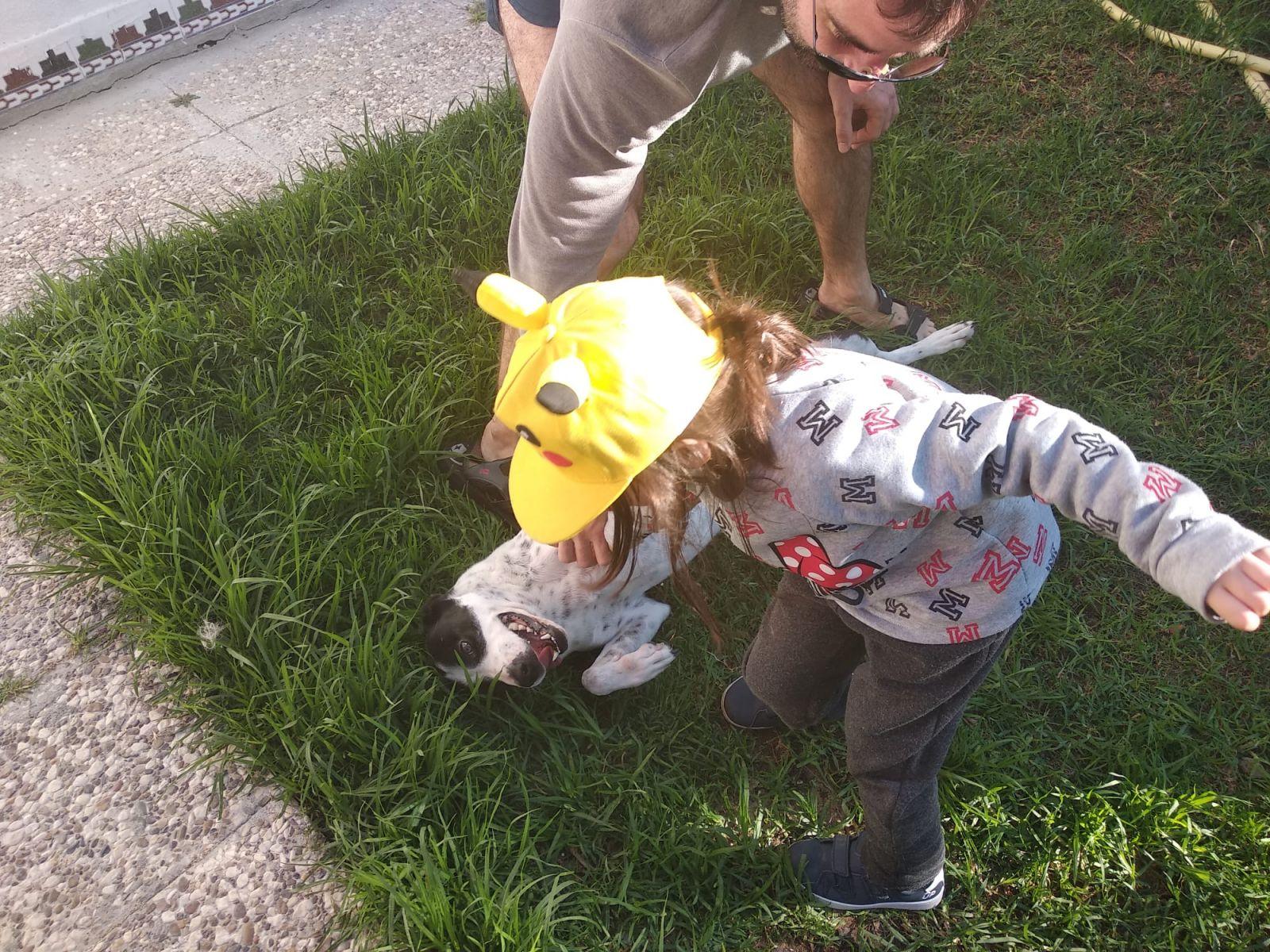 nina juega con su perro y un hombre en el jardin
