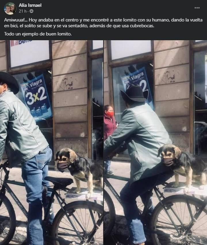 Perro con cubrebocas en una bicileta con su dueño