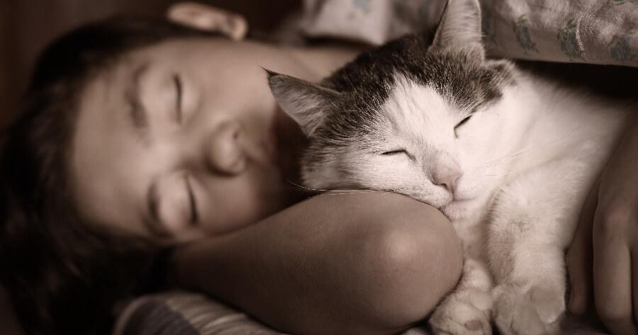 dormir con gato