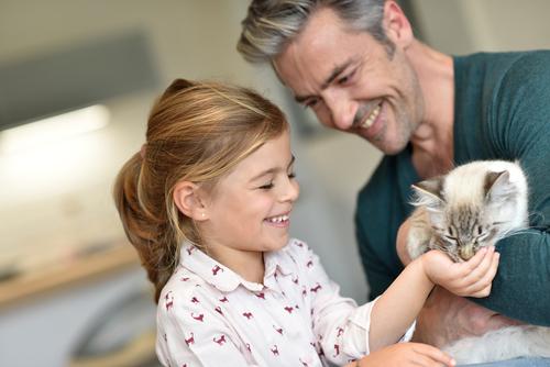 gatto-socievole-con-uomo-e-bambina