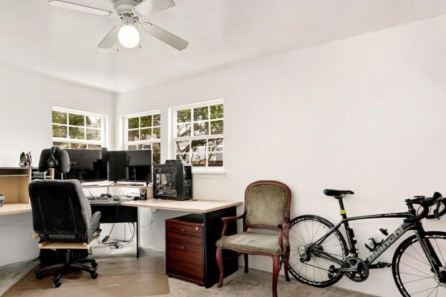 gatti-nascosti-in-ufficio