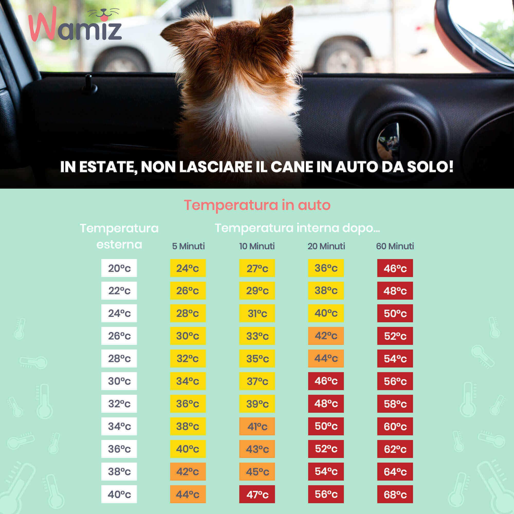 tabella delle temperature di un'auto al sole